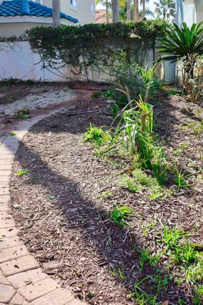 McDaniels-Landscaping-Company-Jacksonville-FL (23)