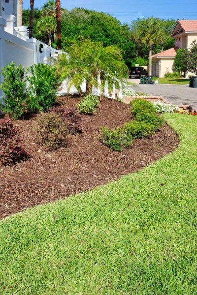 McDaniels-Lawn-Care-Landscaping-Jacksonville-FL (19)