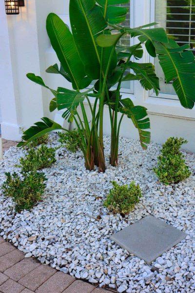 McDaniels-Lawn-Care-Landscaping-Jacksonville-FL (34)